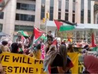 Pro-Palestinian Protesters Chant 'Allahu Akhbar,' Torch Israeli Flag