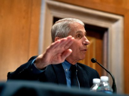 Anthony Fauci, director of the National Institute of Allergy and Infectious Diseases, speaks during a hearing looking into the budget estimates for National Institute of Health (NIH) and the state of medical research on Capitol Hill in Washington, DC on May 26, 2021. (Photo by Stefani Reynolds / POOL / …