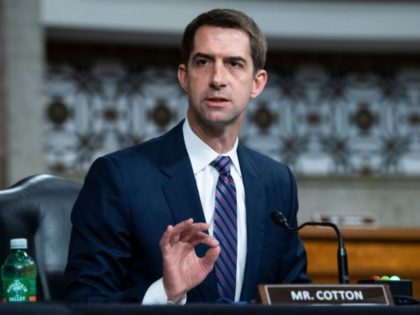 Sen. Tom Cotton, R-AR attends a Senate Judiciary Committee hearing on pending judicial nominations on Capitol Hill in Washington,DC on April 28, 2021. (Photo by Tom Williams / POOL / AFP) (Photo by TOM WILLIAMS/POOL/AFP via Getty Images)