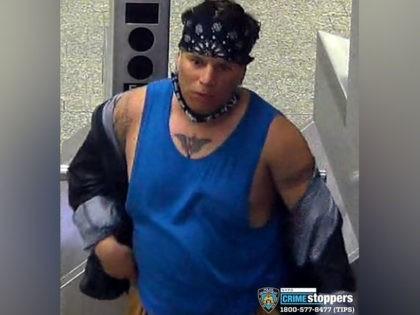 NYC Subway Criminal