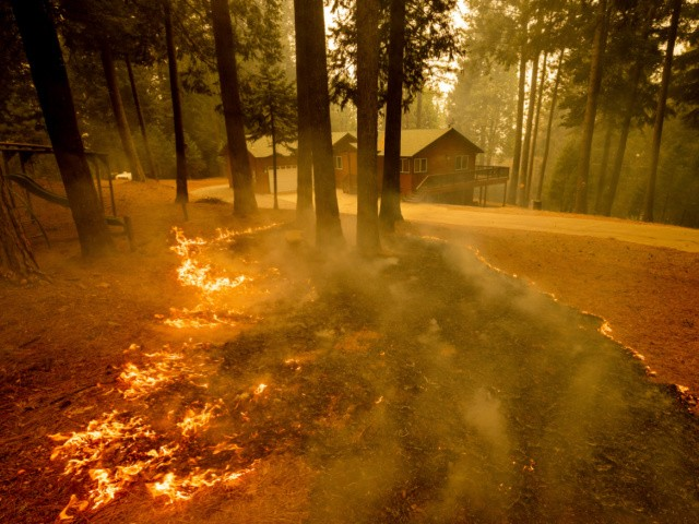 Flames from the Caldor Fire scorch the ground near a structure in Grizzly Flats, Calif., Wednesday, Aug. 18, 2021. (AP Photo/Ethan Swope)