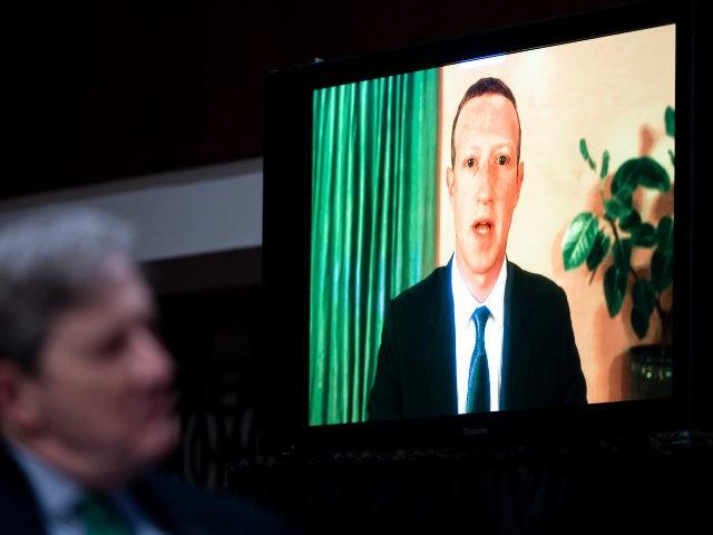 Mark Zuckerberg Lectures America via Video Call