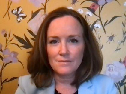 Kathleen Rice on Cuomo on 8/3/2021 MSNBC