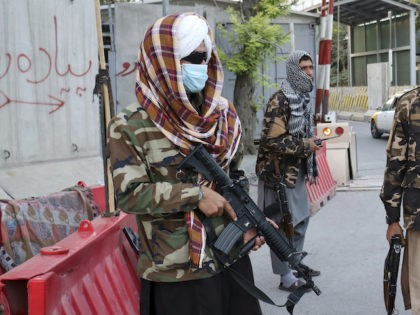 Taliban fighters stand guard at a checkpoint on the road in Kabul, Afghanistan, Wednesday, Aug. 25, 2021. The Taliban wrested back control of Afghanistan nearly 20 years after they were ousted in a U.S.-led invasion following the 9/11 attacks. Their return to power has pushed many Afghans to flee, fearing …