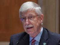 NIH Director Collins: Parents of Young Children Should Wear Masks Inside Home