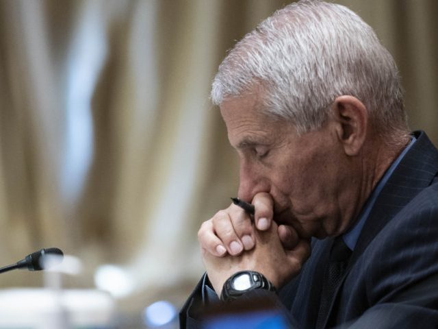 Dr. Anthony Fauci, director of the National Institute of Allergy and Infectious Diseases, listens during a Senate Appropriations Subcommittee looking into the budget estimates for National Institute of Health (NIH) and the state of medical research, Wednesday, May 26, 2021, on Capitol Hill in Washington. (Sarah Silbiger/Pool via AP)