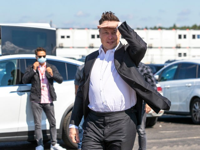 Elon Musk shades his eyes in front of a Tesla