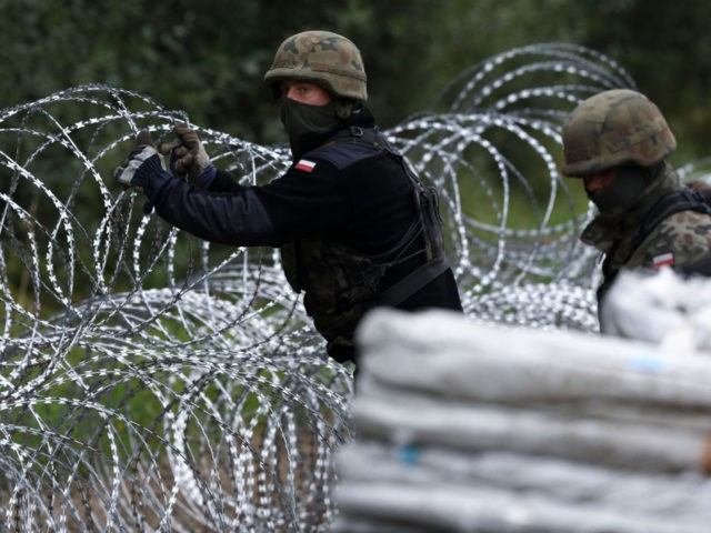 Polish soldiers construct a barbed wire fence on the border with Belarus in Zubrzyca Wielka near Bialystok, eastern Poland on August 26, 2021. - The Polish Ministry of Defence has announced the building of a one hundred kilometer long, two and a half meter high fence along it's border with …