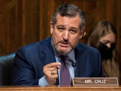 Senator Cruz Slams AOC, Dems over Border Crisis: 'Go See the Biden Cages'