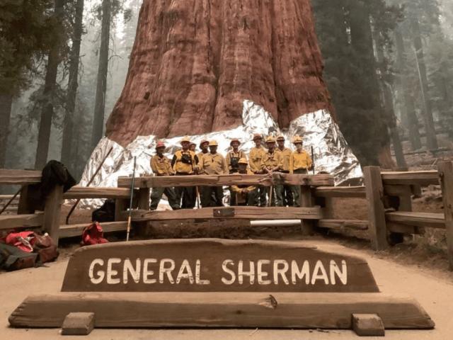 General Sherman sequoia fire (Inciweb / U.S. Government_