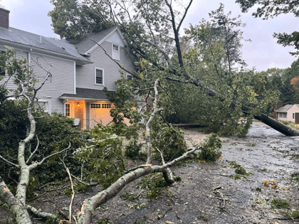Nor'easter Pummels Massachusetts: Upwards of 490,000 Businesses and Homes Lose Power