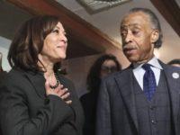 Al Sharpton Complains Biden Is Giving VP Harris 'Marginal' Assignments
