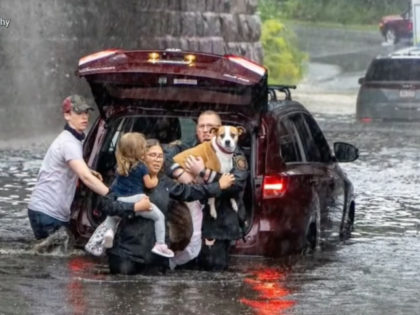 Hero Rescues Mother, Children, Dog from Car Caught in Flood Waters