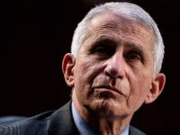 Fauci: Vaccinated Americans Can Enjoy Holidays with Family