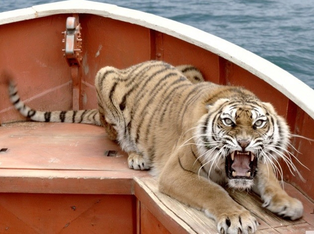 'Life of Pi' Review: Gorgeous Saga Stricken by Narrative Excess
