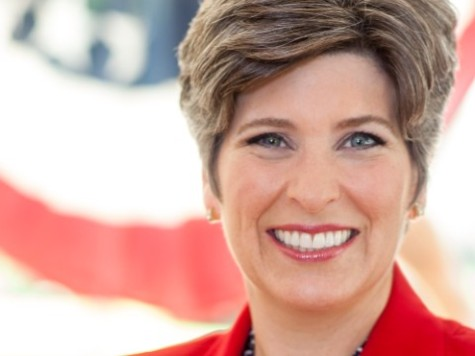 Joni Ernst: 'We Are Going to Make 'Em Squeal!'