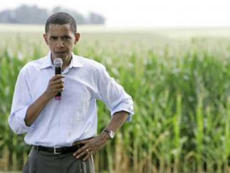 Obama's 'Modest American Dream' More Like a 'Dream Killer'
