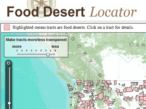 Obama Admin Politicizes Obesity with 'Food Deserts'