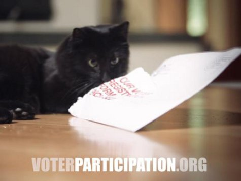 VA Org Mailing Voter Registration Forms Based on Partisan Firm Catalist's Data