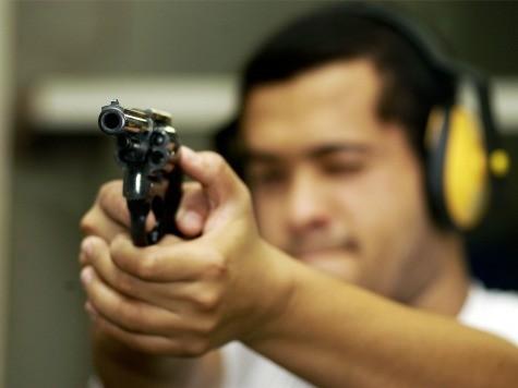 Demand a Plan, but Don't Demand More Gun Control