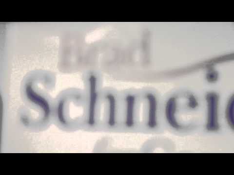 IL Dem Candidate Brad Schneider: America's Smallest Small Businessman