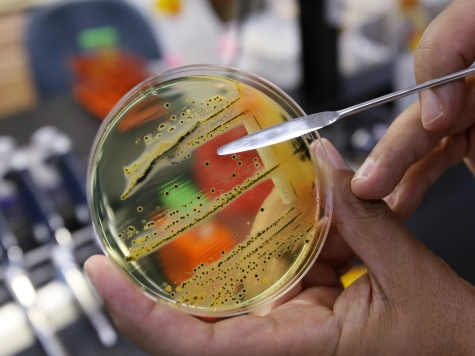 CDC Worried About Outbreak of Antibiotic-Resistant Bacteria