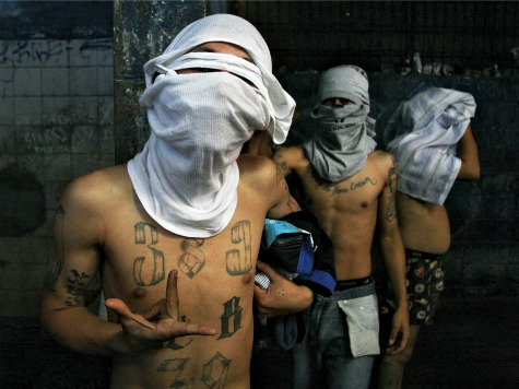 FBI Documents Connect Aryan Brotherhood with Mexican Cartels