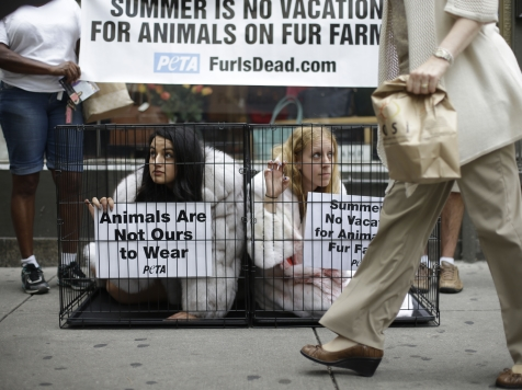 PETA Goes After Online Commenters