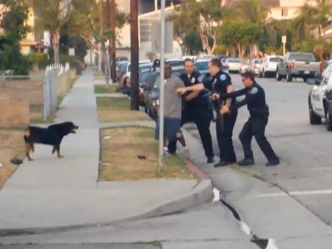 Police: Video Evidence Exonerates CA Officer Who Killed Rottweiler