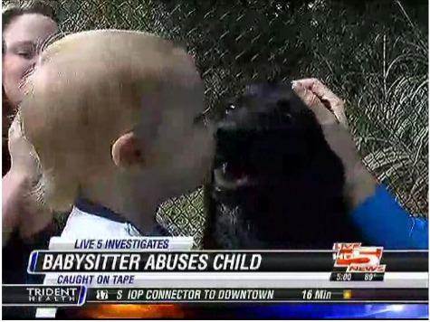 Family Dog Stops Abusive Babysitter
