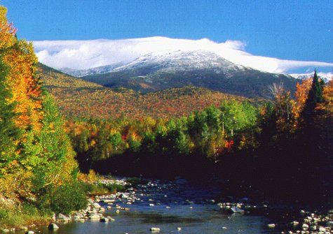 White Mountain Leaf-Peepers Distraught as Campsites Close over Shutdown