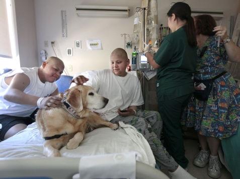 NIH Stops Therapy Dogs from Visiting Sick Children