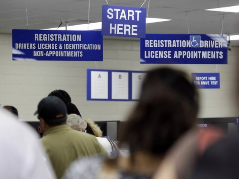 DMV Official Pleads Guilty to Giving Illegals Driver's Licenses