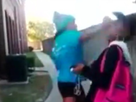 #Sharkeisha: Video of Vicious Attack Trends Worldwide