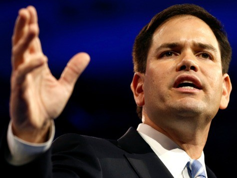 Establishment Shopping for Chris Christie Alternative, Eyeing Marco Rubio