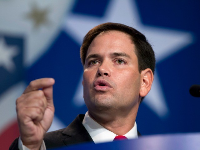 Exclusive: Tea Party Patriots Co-Founder 'Glad' Rubio Opposes Senate Immigration Bill