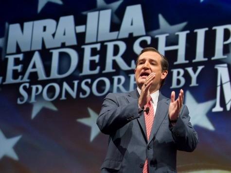 Ted Cruz Challenges Joe Biden to Gun Control Debate