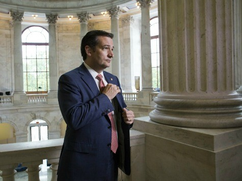 Ted Cruz: I Need a 'Grassroots Army' to Defund Obamacare, Stop Amnesty