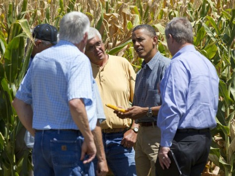Obama Ethanol Policy Eroding Conserved Lands