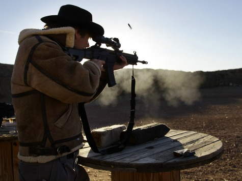 Arizona Senate Takes Up Nullification of Federal Gun Laws