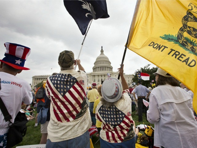 Tea Party Patriots Co-Founder: 'Vile' for Wall Street Journal to Call Movement Racist