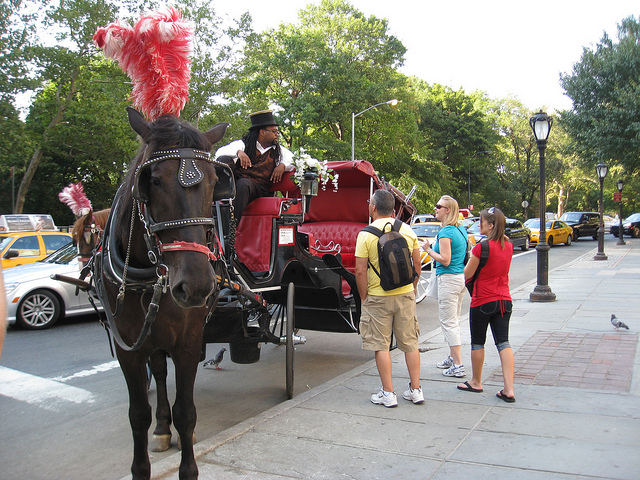 De Blasio May Ban Horse-Drawn Carriage Rides in NYC