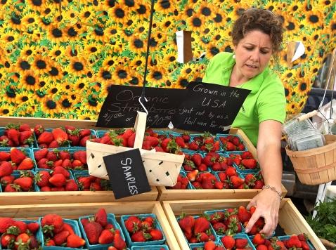 FDA Rules Threaten Organic Farmers