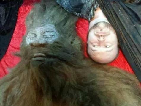 'Bigfoot' Draws a Crowd at Houston Flea Market