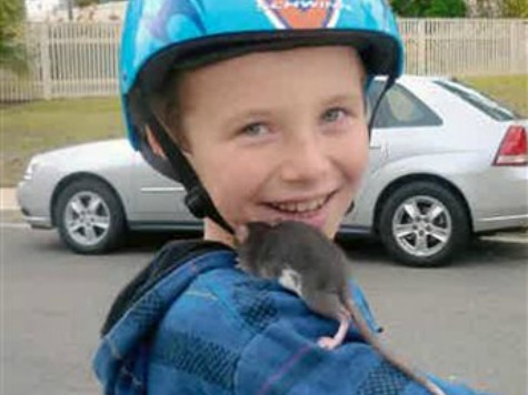 Family Claims Child Died from Infected Pet Rat Purchased at PETCO