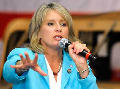 Ellmers Berates Constituents for Opposing Amnesty: 'You Don't Have Any Damn Facts!'