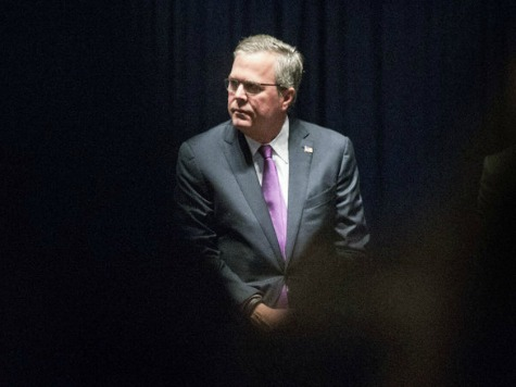 Poll: Only 15 Percent of Americans Want Jeb Bush To Run For President