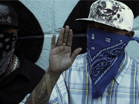 Report: Obama Admin Knowingly Letting Illegal Immigrant Gang Members into US