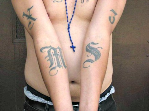 HHS Transferring Illegal Unaccompanied Minors with Potential MS-13 Ties to Gang Stronghold Cities