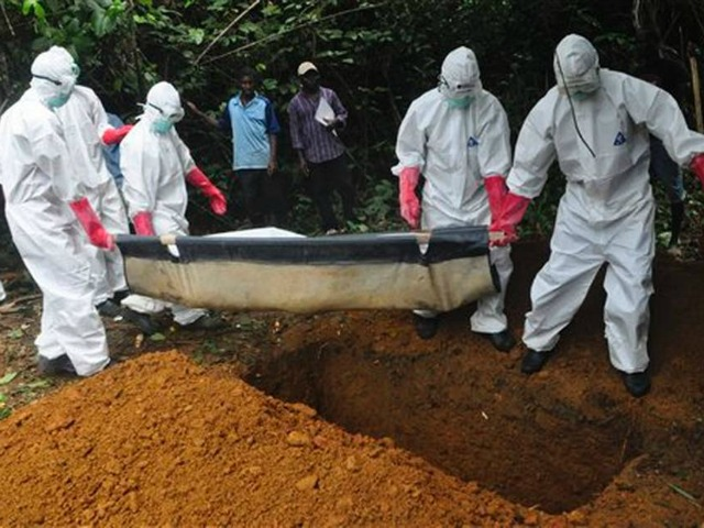 Ebola's 395 Mutations Boost Odds of Epidemic Spreading